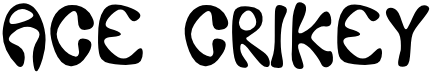 Preview image for Ace Crikey Font