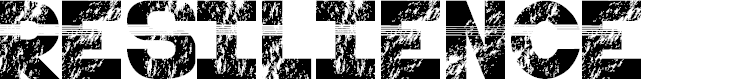 Preview image for resilience - LJ-Design Studios Grunge Font