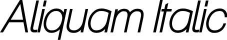 Preview image for Aliquam Italic