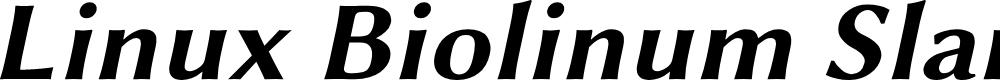 Preview image for Linux Biolinum Slanted Bold