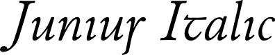 Preview image for Junius Italic