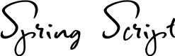 Preview image for Spring Script Font