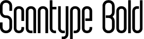 Preview image for Scantype Bold PERSONAL USE