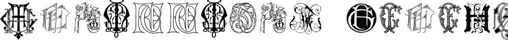 Preview image for Intellecta Monograms Random Samples Seven Font