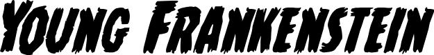 Preview image for Young Frankenstein Italic