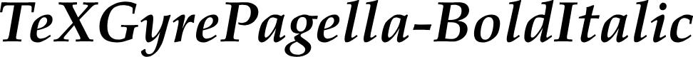 Preview image for TeXGyrePagella-BoldItalic