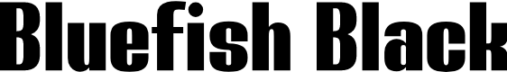 Preview image for Bluefish Black Demo Font