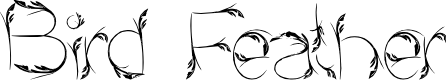 Preview image for Bird Feather Font