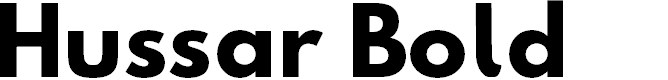 Preview image for Hussar Bold Font