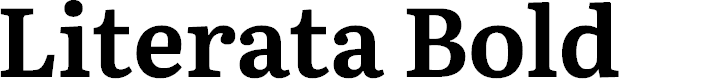 Preview image for Literata Bold Font