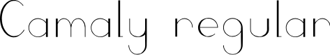 Preview image for Camaly regular Font