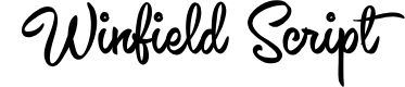 Preview image for Winfield Script PERSONAL USE Font