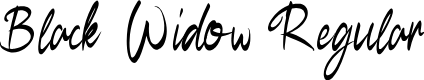 Preview image for BlackWidow-Regular Font
