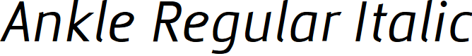 Preview image for Ankle Regular Italic