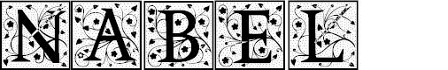 Preview image for Nabel Font