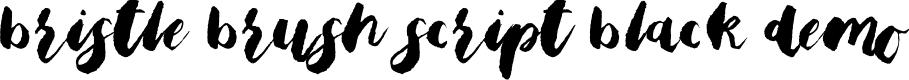 Preview image for Bristle Brush Script Black Demo Font