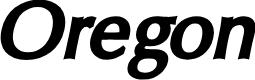 Preview image for Oregon LDO Black Oblique