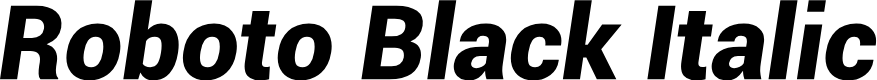 Preview image for Roboto Black Italic