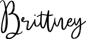 Preview image for Brittney Font