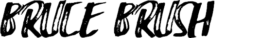 Preview image for Bruce Brush Font