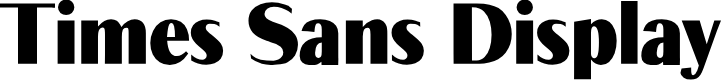 Preview image for Times Sans Display Font