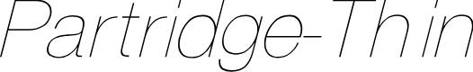 Preview image for Partridge Thin Oblique
