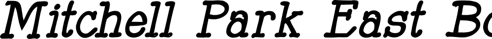Preview image for Mitchell Park East Bold Italic