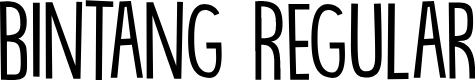 Preview image for DK Bintang Regular Font