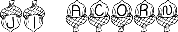 JI Acorn font
