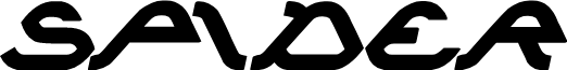 SPIDER Bold Italic