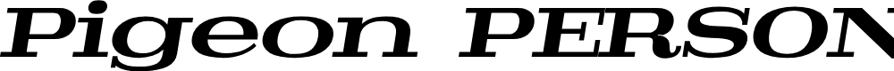Preview image for Pigeon PERSONAL Bold Italic