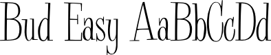 Preview image for Bud Easy Normal Font