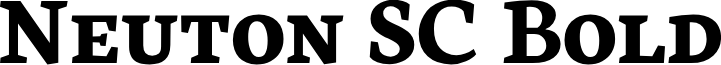 Neuton SC Bold