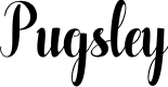 Preview image for Pugsley Font