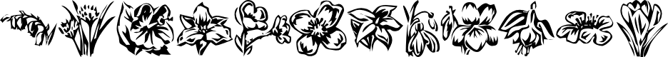 Preview image for KR Beautiful Flowers 2 Font