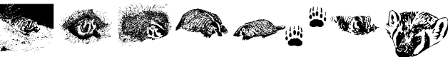 Preview image for KR Crystal's Badgers Font