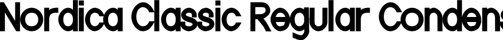 Preview image for Nordica Classic Regular Condensed