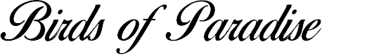 Preview image for Birds of Paradise - Personal use Only Font