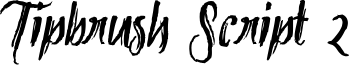 Tipbrush Script 2