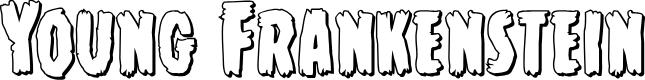Preview image for Young Frankenstein 3D Regular