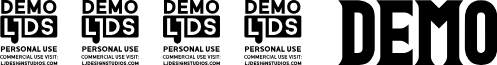 1993 DEMO