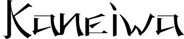 Preview image for KANEIWA alp regular Font
