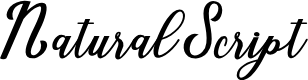 Preview image for NaturalScript Font