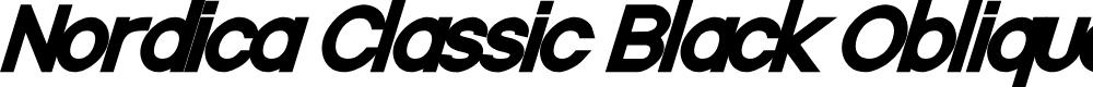 Preview image for Nordica Classic Black Oblique