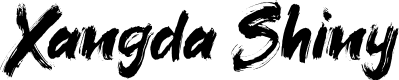 Preview image for Xangda Shiny Font