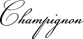 Preview image for Champignon Font