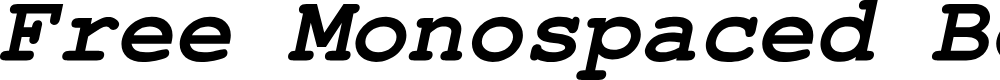 Preview image for Free Monospaced Bold Oblique