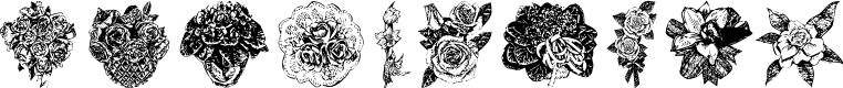 Preview image for Destinys Flowers Font