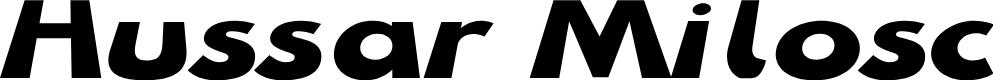 Preview image for Hussar Milosc Font