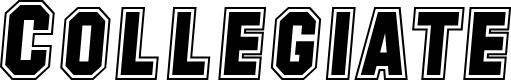 Preview image for SF Collegiate Italic